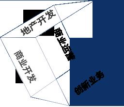 商業管理 商業開發 地(di)產開發 創新業務